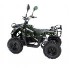 Детский электроквадроцикл VOLTRIX LEOPARD MINI 800